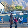 Highland Reel<br /> Morning scenes at Santa Anita in preparation for 2016 Breeders' Cup on Nov. 3, 2016, in Arcadia, CA.