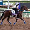 Daddys Lil Darling, Juvenile Fillies<br /> Works at Santa Anita in preparation for 2016 Breeders' Cup on Oct. 29 2016, in Arcadia, CA.