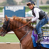 Dortmund with Martin Garcia<br /> Works at Santa Anita in preparation for 2016 Breeders' Cup on Oct. 30, 2016, in Arcadia, CA.