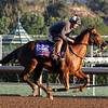 Undrafted Breeders' Cup Turf Sprint Chad B. Harmon