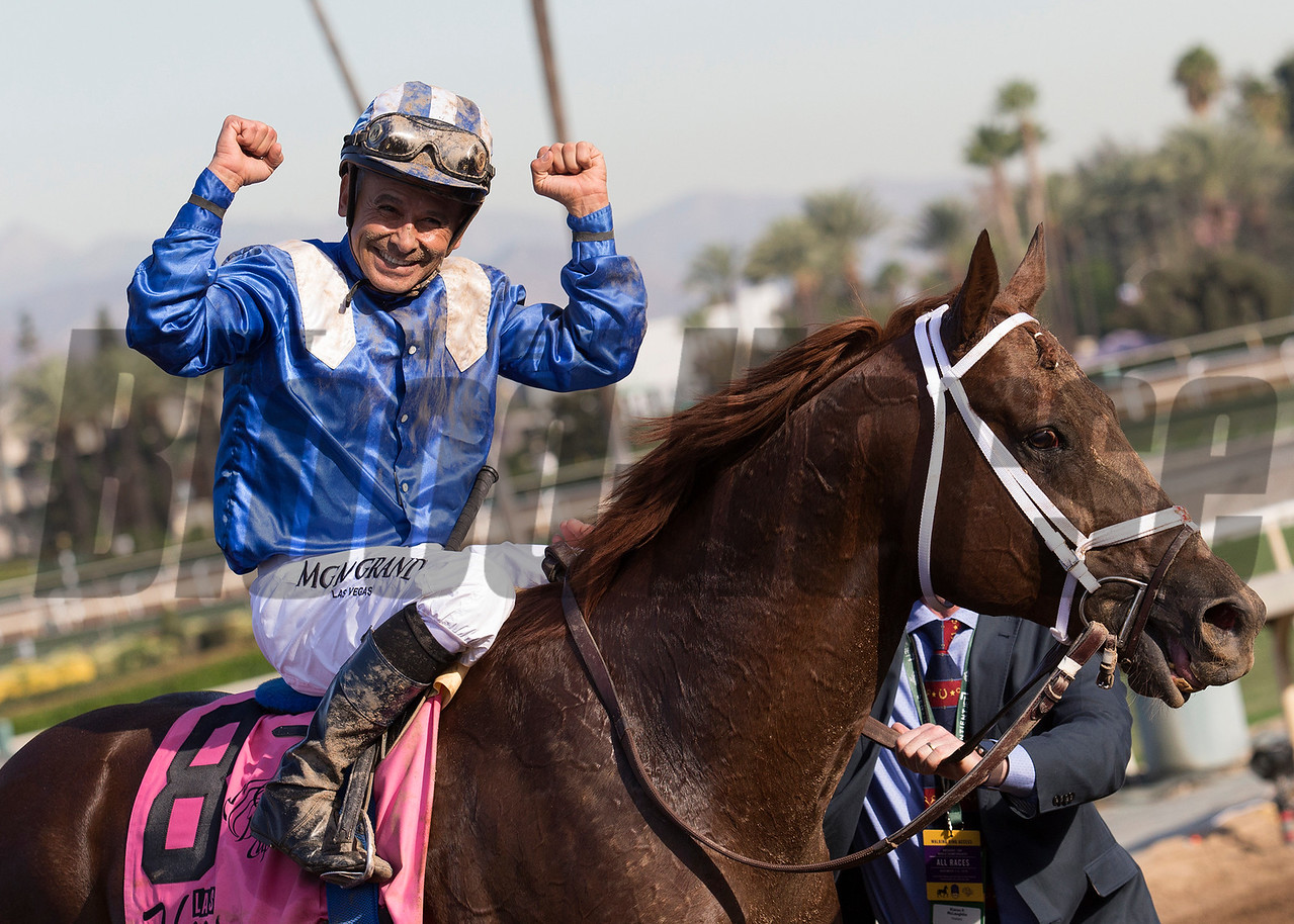 Mike Smith and Tamarkuz  celebrate after winning the the Las Vegas Breeders' Cup Dirt Mile at Santa Anita at 11/4/16.