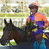 Gary Stevens sits atop Beholder after winning the win in the Breeders' Cup Distaff at Santa Anita Nov. 4, 2016 in Arcadia, California.  Photo by Skip Dickstein