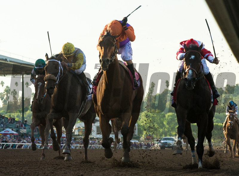 Beholder wins the 2016 Breeders' Cup Distaff<br /> Skip Dickstein Photo