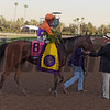 Beholder with jockey Gary Stevens up is greeted by trainer Dick Mandella after winning the Breeders' Cup Distaff at Santa Anita Nov. 4, 2016 in Arcadia, California.  Photo by Skip Dickstein