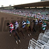 The field in the Longines Breeders Cup Distaff leaving the starting gate at Santa Anita on 11/4/16.