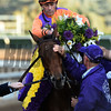 Gary Stevens sits atop Beholder after winning the Breeders' Cup Distaff at Santa Anita Nov. 4, 2016 in Arcadia, California.  Photo by Skip Dickstein