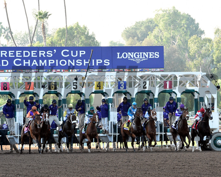 The start of the 2016 Breeders' Cup Distaff<br /> Dave Harmon Photo
