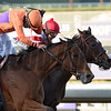 Gary Stevens guides Beholder, left duels to the finish with Mike Smith on Songbird to the win in the Breeders' Cup Distaff at Santa Anita Nov. 4, 2016 in Arcadia, California.  Photo by Skip Dickstein