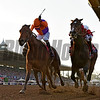 Gary Stevens guides Beholder, left, in a duel to the finish with Mike Smith on Songbird to the win in the Breeders' Cup Distaff at Santa Anita Nov. 4, 2016 in Arcadia, California.  Photo by Skip Dickstein