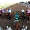 Breeders' Cup Distaff Starting Gate Remote Chad B. Harmon