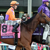 Beholder Gary Stevens Post Parade Breeders' Cup Distaff Chad B. Harmon