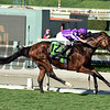 Highland Reel, with Seamus Heffernan up, wins the Longines Turf (gr. I) at Santa Anita on Nov. 5, 2016, in Arcadia, California.<br /> Dave Harmon Photo
