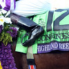 Highland Reel Breeders' Cup Turf Chad B. Harmon