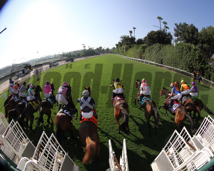 Breeders' Cup Turf Starting Gate Remote Chad B. Harmon
