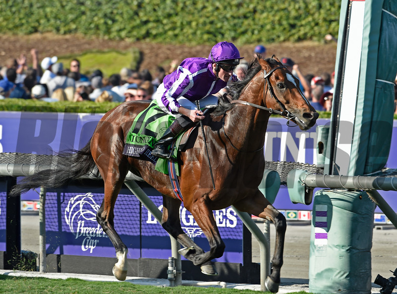 Highland Reel, with Seamus Heffernan up, wins the Longines Turf (gr. I) at Santa Anita on Nov. 5, 2016, in Arcadia, California.