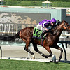 Highland Reel wins the Breeders' Cup Turf.<br /> Dave Harmon Photo