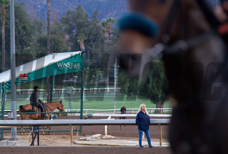 WinStar sponsored pony shelter<br /> Works at Santa Anita in preparation for 2016 Breeders' Cup on Oct. 31, 2016, in Arcadia, CA.