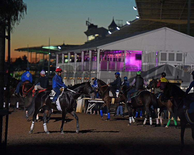 Morning scenes at Santa Anita in preparation for 2016 Breeders' Cup on Nov. 2, 2016, in Arcadia, CA.