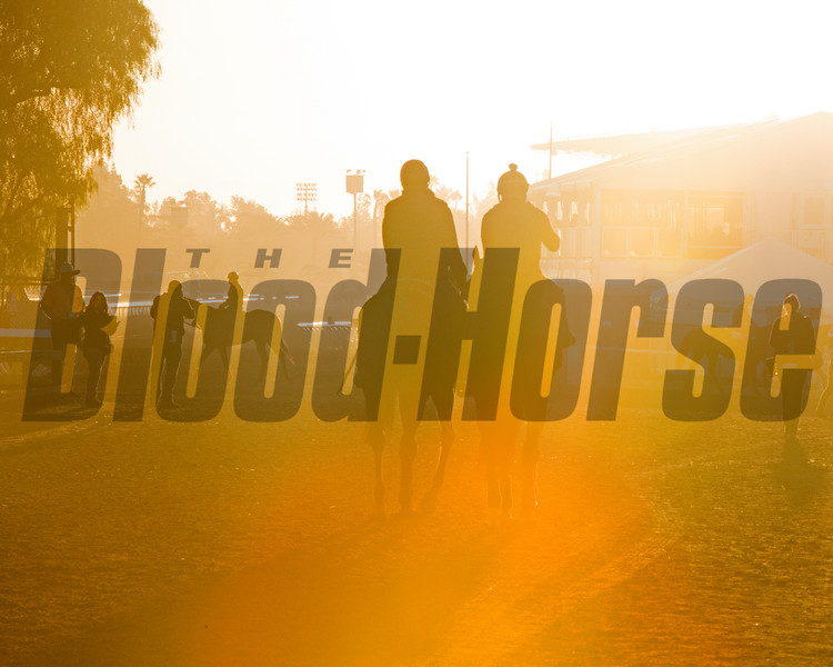 Sunrise<br /> Morning scenes at Santa Anita in preparation for 2016 Breeders' Cup on Nov. 2, 2016, in Arcadia, CA.