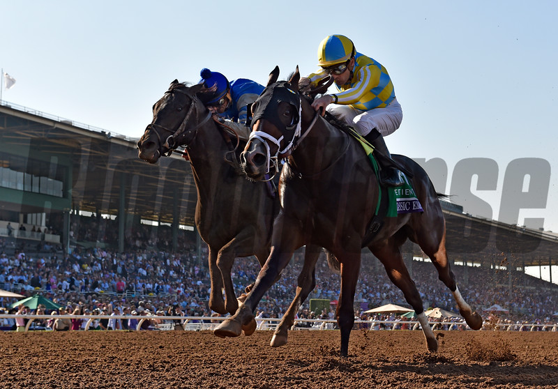 Classic Empire wins the 2016 Breeders' Cup Juvenile<br /> Skip Dickstein Photo