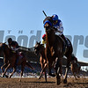 Drefong wins the 2016 Breeders' Cup Sprint<br /> Skip Dickstein Photo