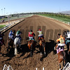 Breeders' Cup Sprint Starting Gate Remote Chad B. Harmon