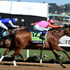 Caledonia Road wins the 2017 Breeders' Cup Juvenile Fillies<br /> Dave Harmon Photo