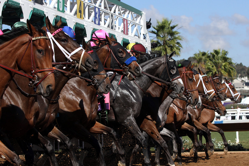 Breeders' Cup Juvenile Fillies Start Del Mar Chad B. Harmon