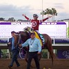 Florent Geroux celebrates after winning the Breeders Cup Classic atop Gun Runner on November 4, 2017. Photo by Anne Eberhardt.