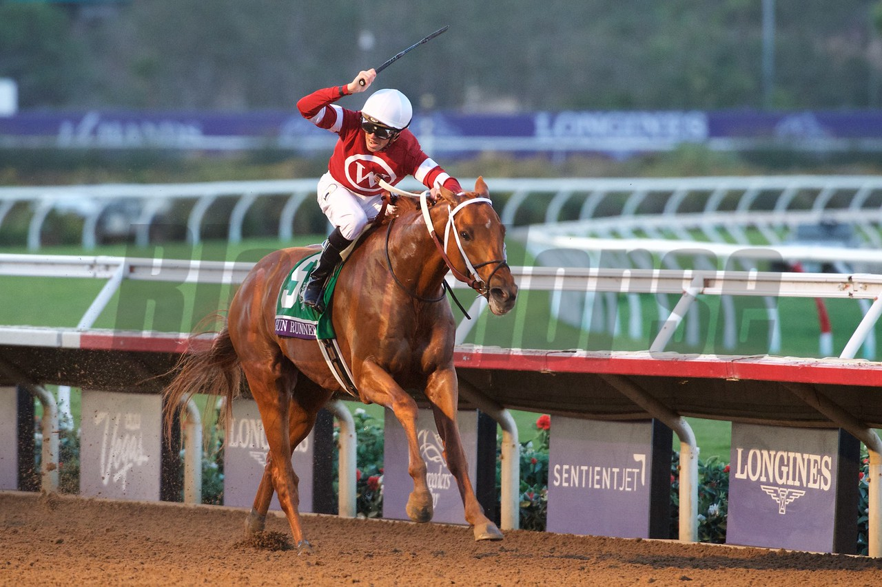 Gun Runner wins the Breeders Cup Classic on November 4, 2017. Photo by Skip Dickstein