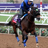 Ransom The Moon Breeders' Cup Del Mar Chad B. Harmon