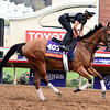 Lady Eli<br /> Dave Harmon Photo