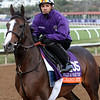 Grand Jete Breeders' Cup Del Mar Chad B. Harmon