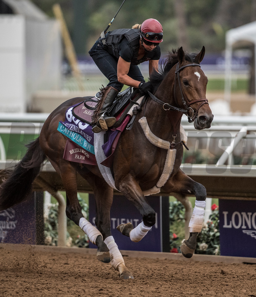 Catholic Boy out for morning exercise at Del Mar Nov. 1, 2017.  Photo by Skip Dickstein