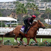 Skye Diamonds Breeders' Cup Del Mar Chad B. Harmon