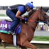 Sadler's Joy Breeders' Cup Turf Del Mar Chad B. Harmon