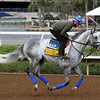 Win The Space Breeders' Cup Classic Del Mar Chad B. Harmon