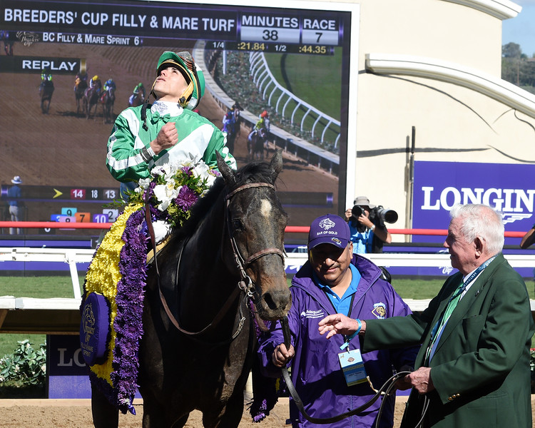 Bar of Gold wins the Breeders Cup Filly and Mare Sprint on November 4, 2017.