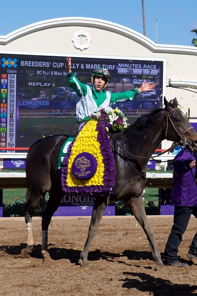 Rad Ortiz celebrates after winning the Breeders Cup Filly and Mare Sprint atop Bar of Gold on November 4, 2017. Photo by Anne Eberhardt.