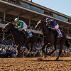 Bar of Gold wins the 2017 Breeders' Cup Filly & Mare Sprint<br /> Skip Dickstein Photo