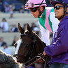 Grand Jete Breeders' Cup Filly & Mare Turf Del Mar Chad B. Harmon
