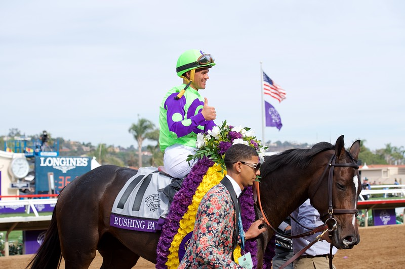 Rushing Fall wins the Juvenile Fillies Turf at Del Mar on November 3, 2017. Photo by Anne Eberhardt.