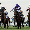 Mendelssohn wins the 2017 Breeders' Cup Juvenile Turf<br /> Skip Dickstein Photo