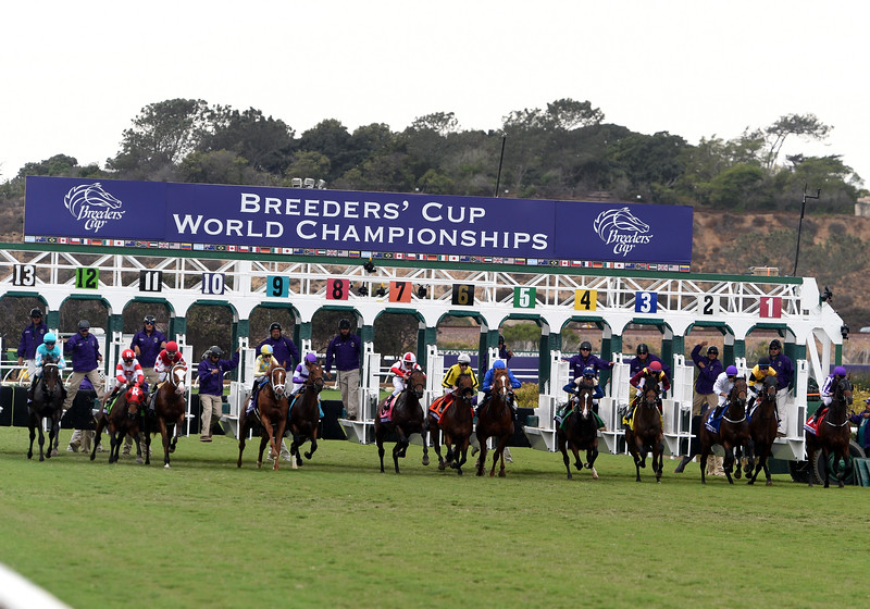 2017 Breeders' Cup Juvenile Turf<br /> Dave Harmon Photo