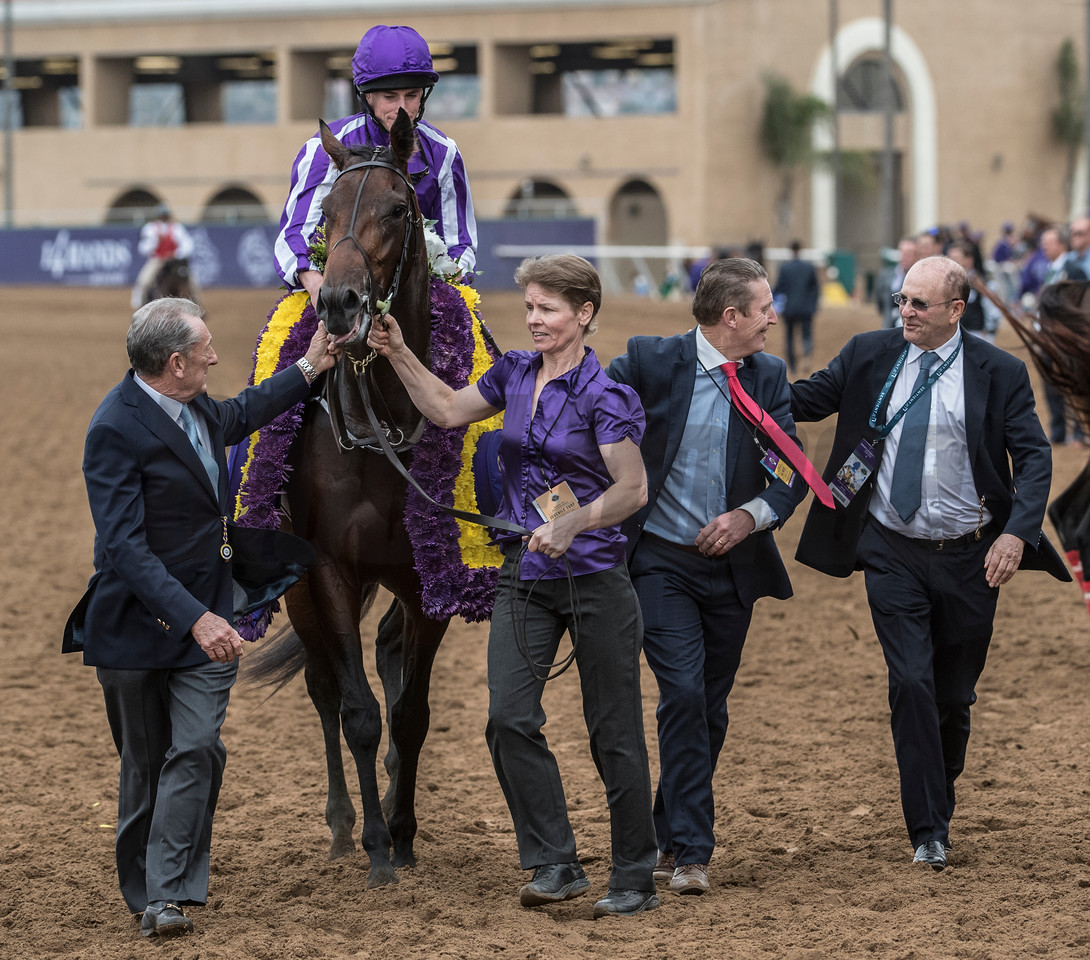 Mendelssohn wins the Breeders Cup Juvenile Turf on November 3, 2017. Photo by Skip Dickstein.