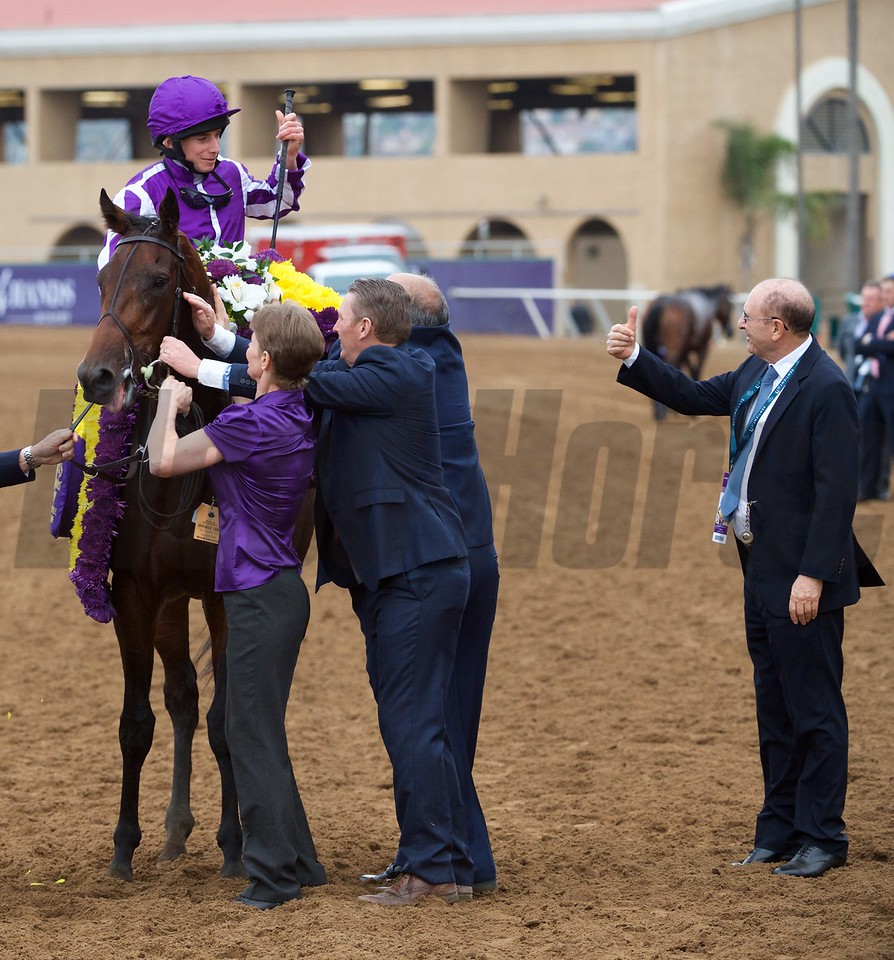 Ryan Moore celebrates winning the Breeders Cup Juvenile Turf atop Mendelssohn on November 3, 2017. Photo by Skip Dickstein.