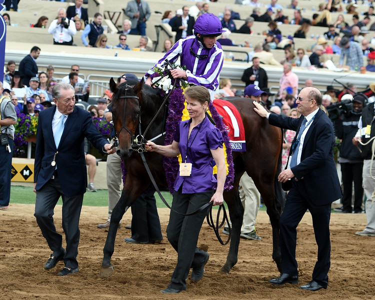 Mendelssohn wins the 2017 Breeders' Cup Juvenile Turf<br /> Dave Harmon Photo