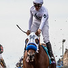 Battle of Midway wins the 2017 Breeders' Cup Dirt Mile<br /> Skip Dickstein Photo