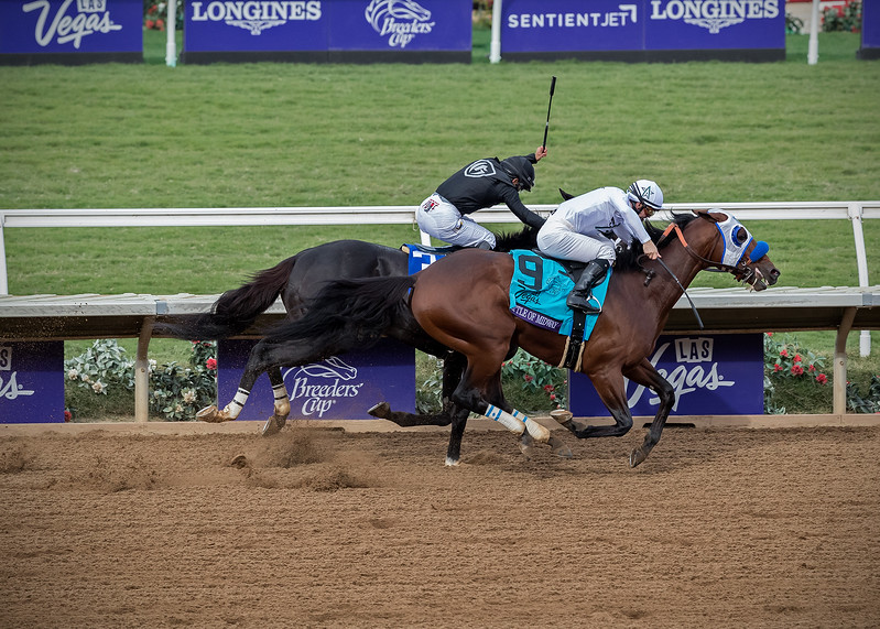 Battle of Midway wins the Breeders Cup Dirt Mile at Del Mar on November 3rd 2017, jockey Flavian Pratt up