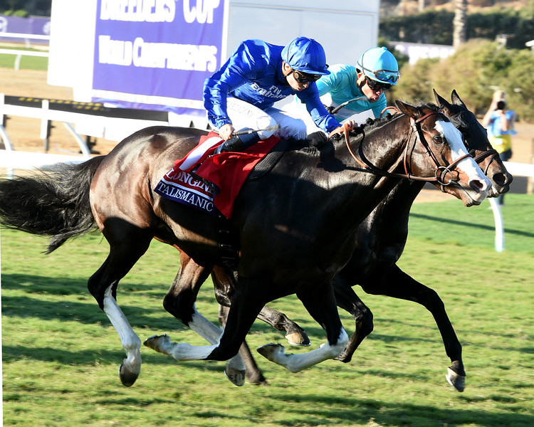 Talismanic wins the Breeders Cup Turf on November 4, 2017.<br /> Dave Harmon Photo